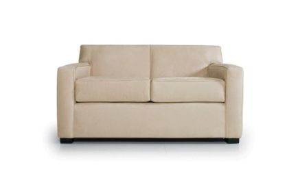 Domicile Frank Jr. Loveseat